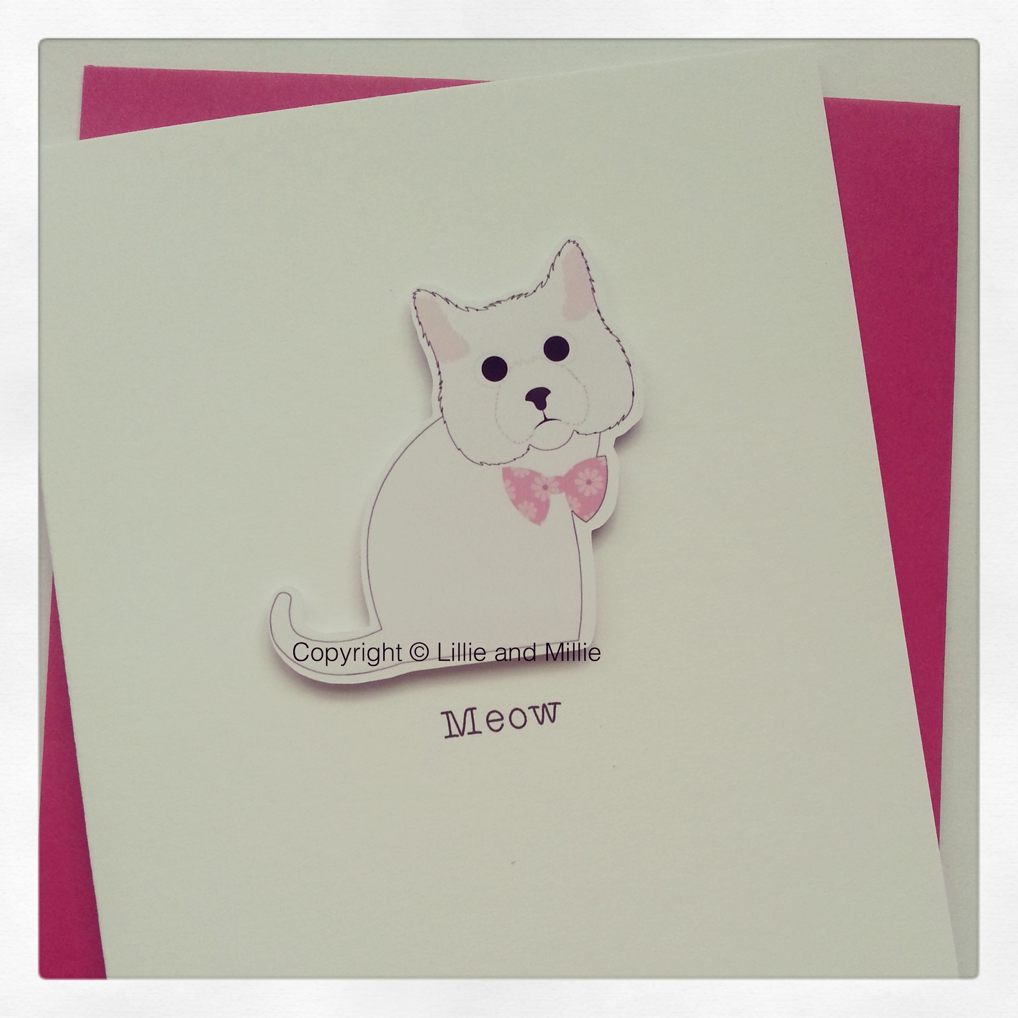 Cute and Cuddly White Cat Card