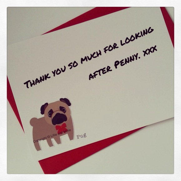 Cute and Cuddly Notelet Cards 4 Pack