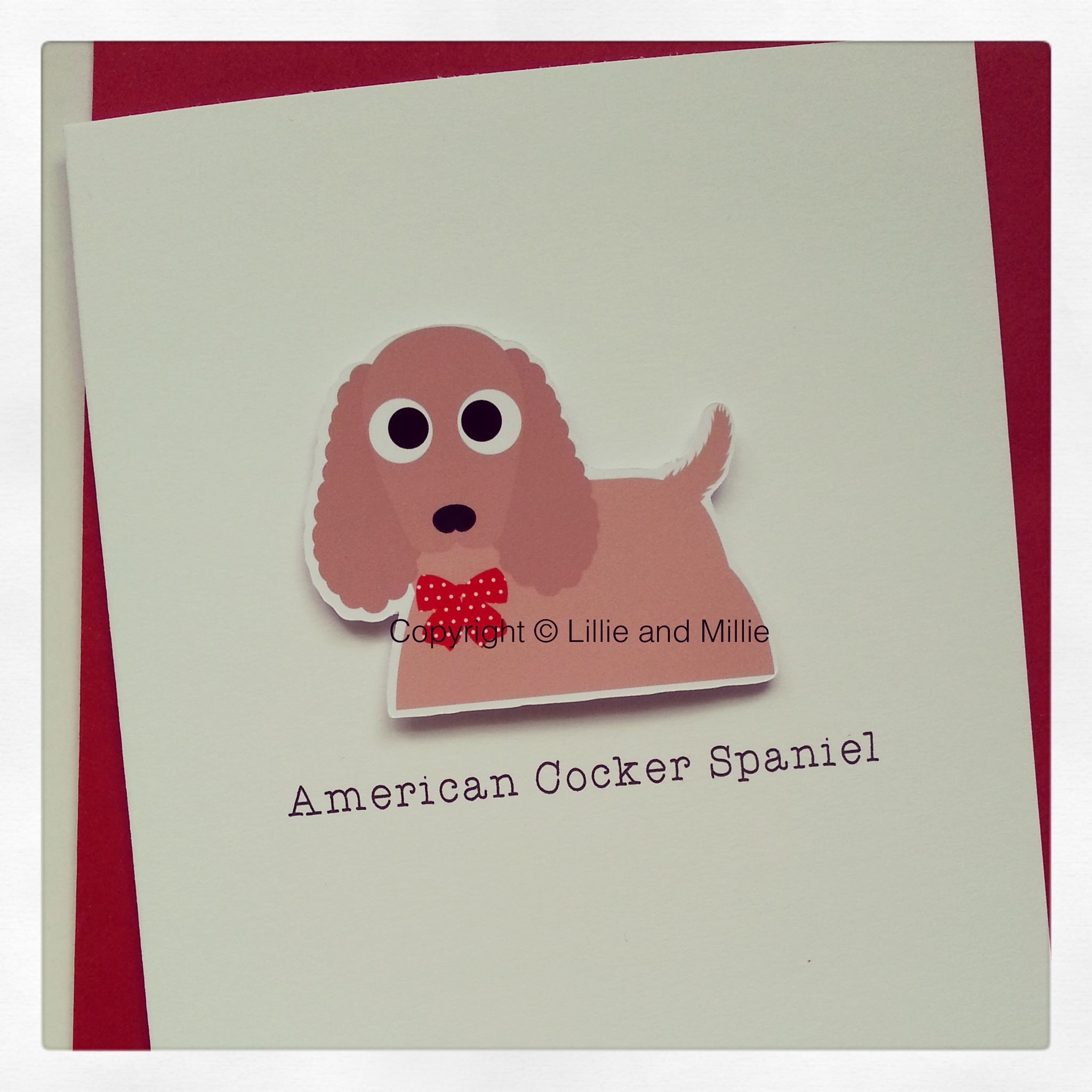 Cute and Cuddly American Cocker Spaniel Greetings Card