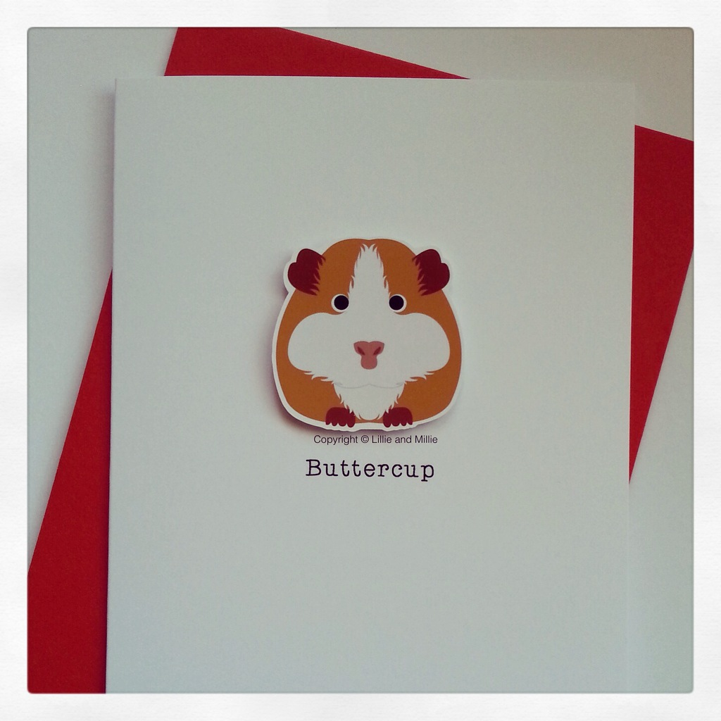 Gorgeous Guinea Pig Personalised Card