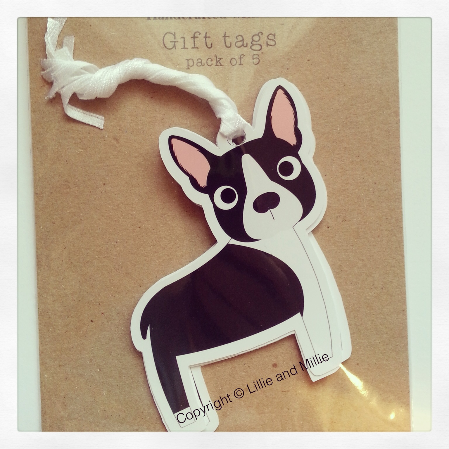 Boston Terrier Dog Greetings Card