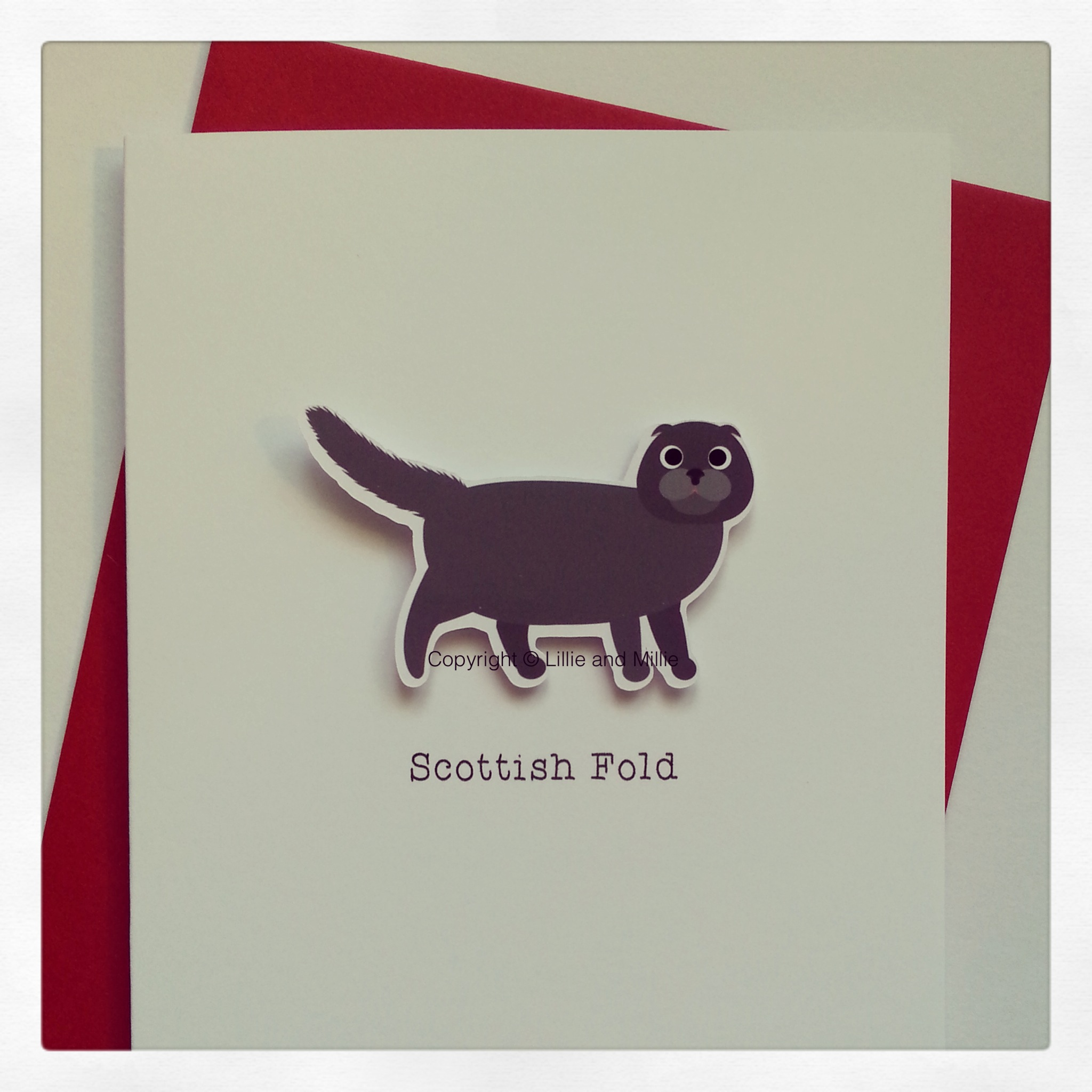 Cute and Cuddly Grey Scottish Fold Cat Card