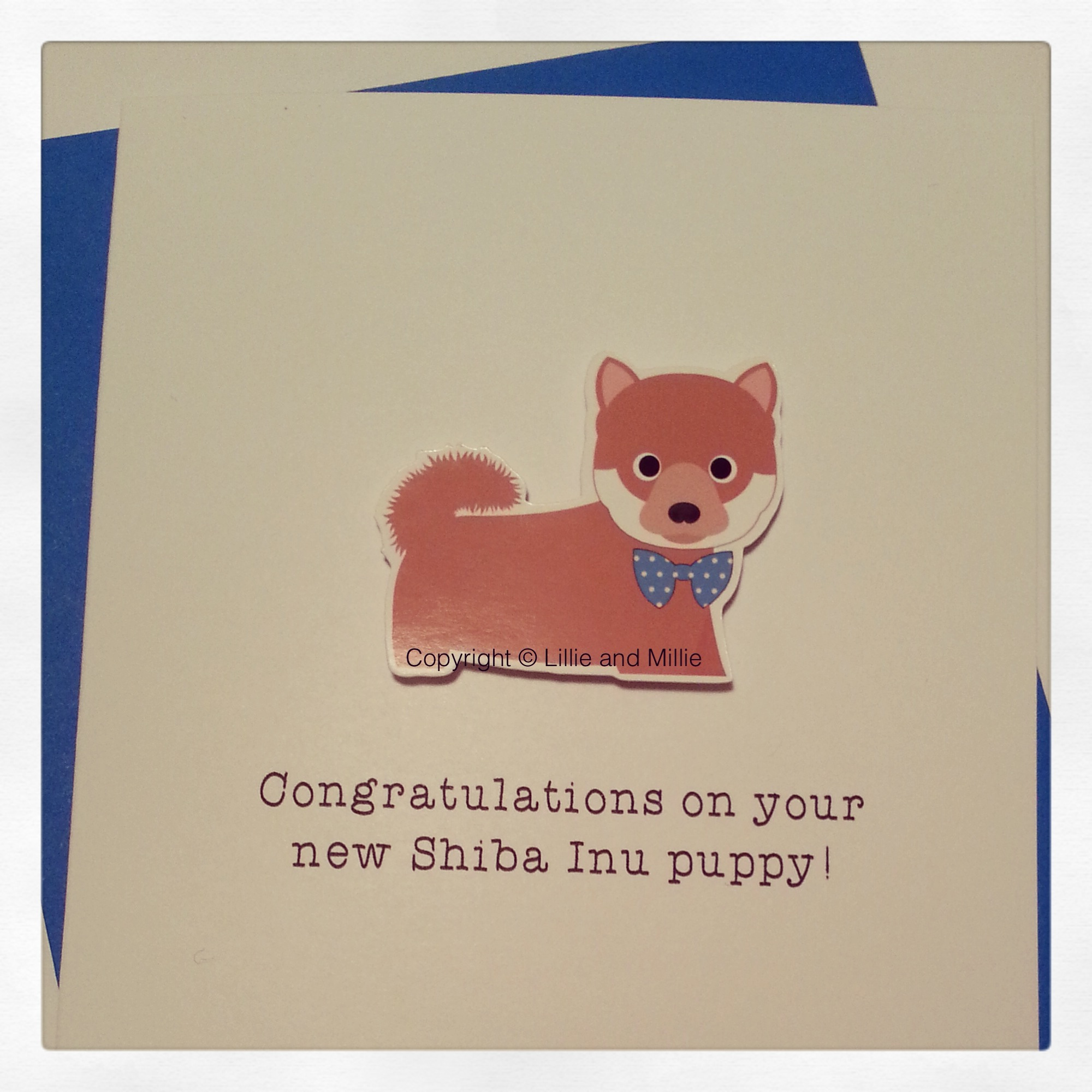 Cute and Cuddly Shiba Inu Blue Bow Congratulations Puppy Card
