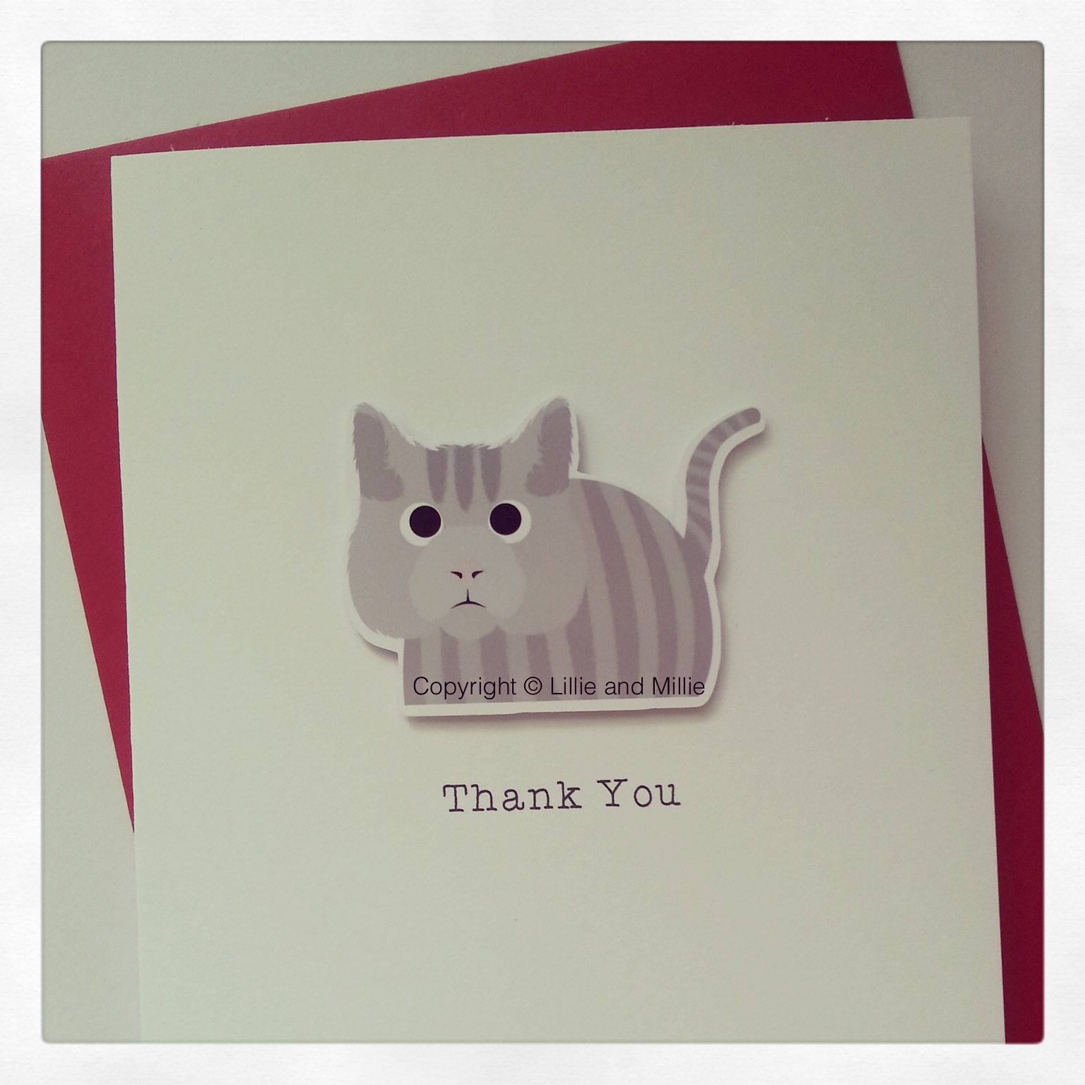 Cute and Cuddly Silver Tabby Cat Greetings Card