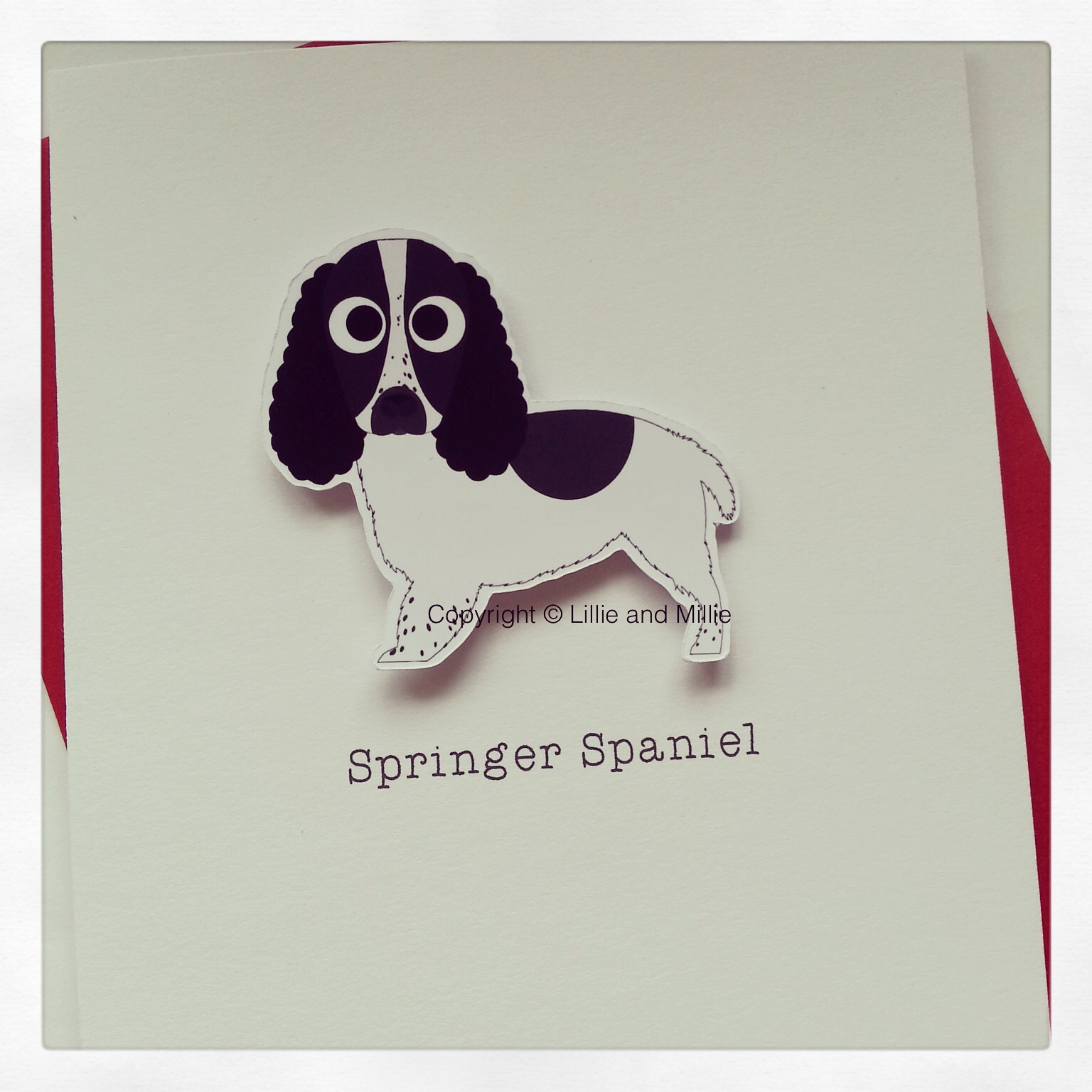 Cute and Cuddly Black Springer Spaniel Card