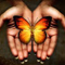 butterfly hands avatar