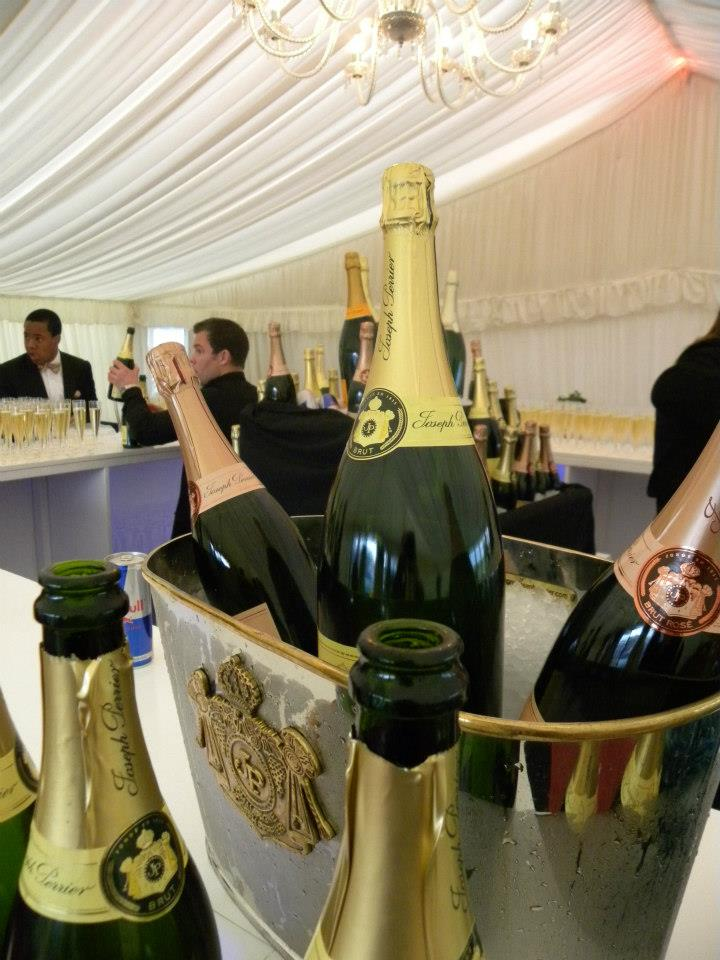 Champagne Bar Dummy Bottles