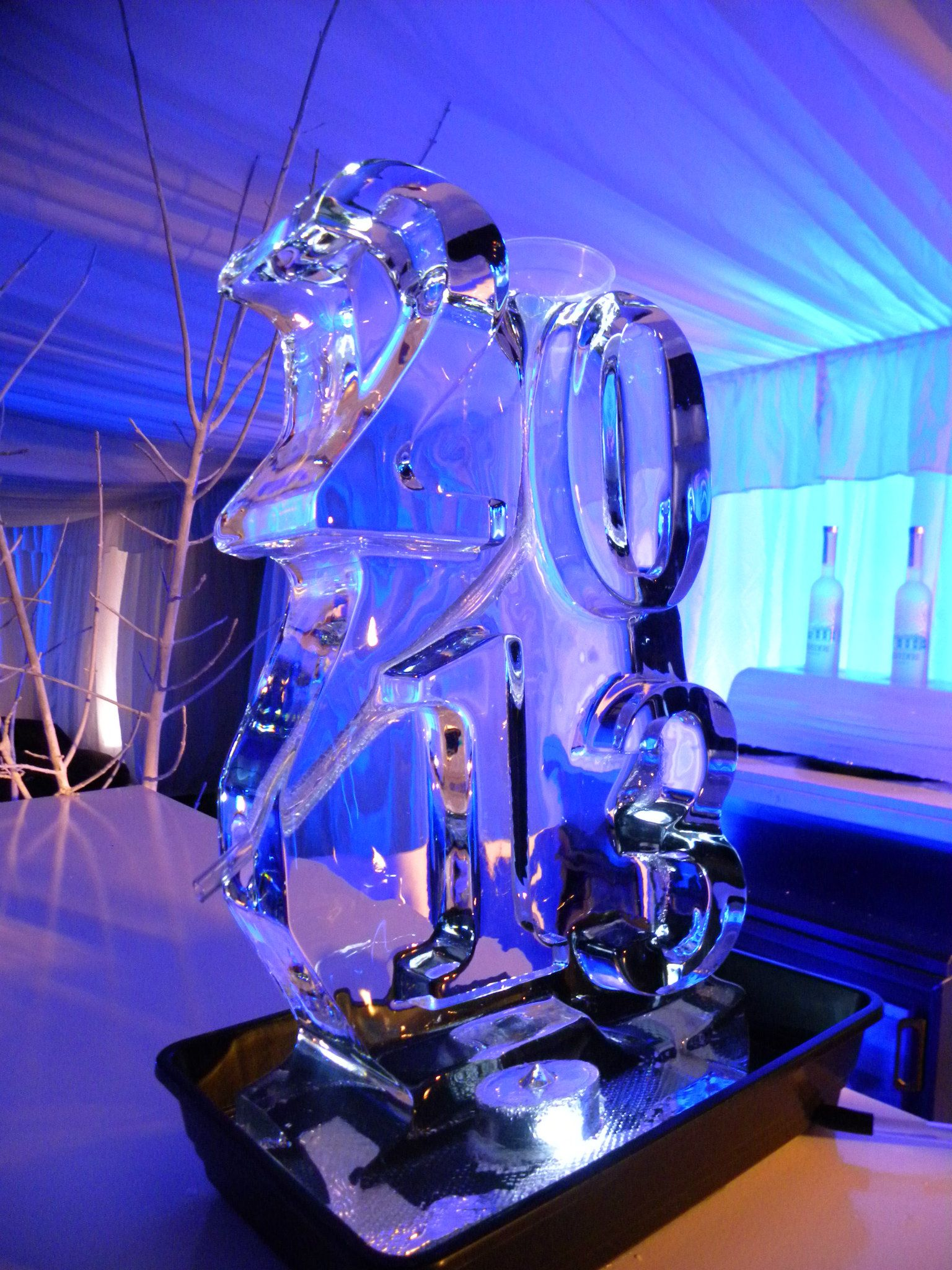 DW Vodka Luge
